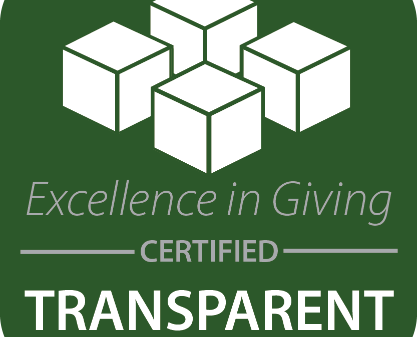 Excellence in Giving Certificate